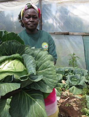 Ruth Muriuki in the greenhouse she built with the help of a microloan. / Isaiah Esipisu/IPS