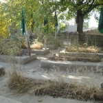 The green flags flags on the nine graves in Parwan&#039;s Laghmani village are visible from miles away. Credit: Killid