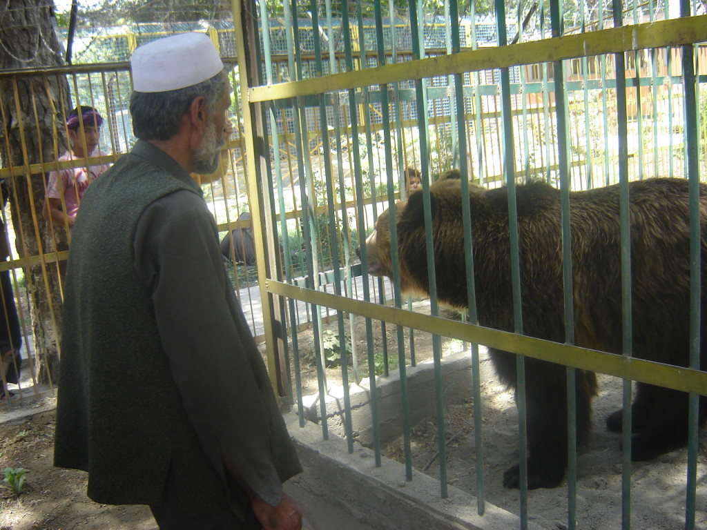 The Kabul Zoo was counted among Asia's finest before war ravaged Afghanistan. Credit: Killid
